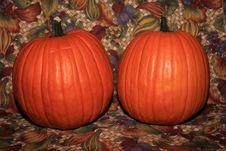 Free Pumpkins Royalty Free Stock Photos - 21070678
