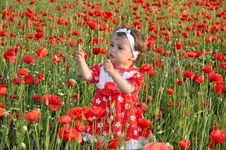 Free Children Among Flowers Royalty Free Stock Images - 21072549