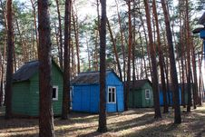 Small Houses In A Pine Forest Royalty Free Stock Photos