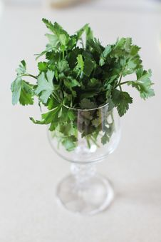 Free Parsley Royalty Free Stock Photography - 21074567
