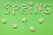 Free Spring Stock Images - 21074604