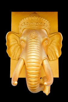 Free Elephant Head Royalty Free Stock Image - 21076176