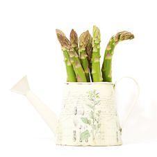 Fresh Green Asparagus Royalty Free Stock Photos