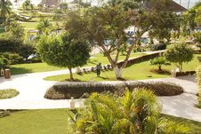Free Beautiful Backyard Landscape Royalty Free Stock Photos - 21076568