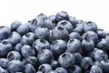 Free Blueberry Royalty Free Stock Images - 21079659