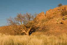 Namibian Landscape Stock Photos