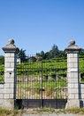 Free Italian Charming Villa In Vineyard Stock Photos - 21083013