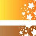Free Stylish Autumn Background Royalty Free Stock Photography - 21087637