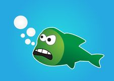 Free Angry Fish Stock Photo - 21081190