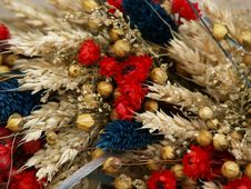 Free Dried Flowers Royalty Free Stock Photo - 21081475
