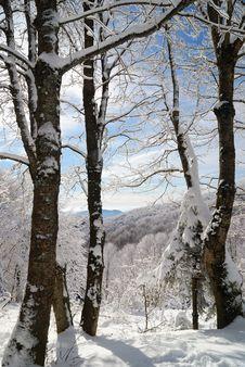 Free Mountain Landscape Stock Image - 21081621