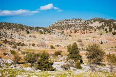 Rural Landscape In Turkey Stock Image