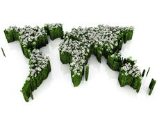 Earth Map With Flowers And Grass