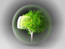Free Tree In A Bubble Stock Image - 21084011