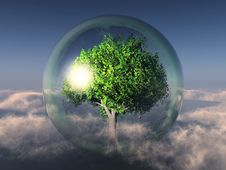 Free Tree In A Bubble Stock Photo - 21084020