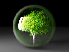 Free Tree In A Bubble Royalty Free Stock Image - 21084036