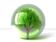 Free Tree In A Bubble Stock Images - 21084044