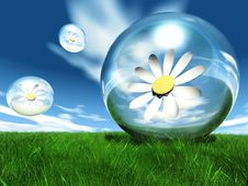 Free Flowers In Bubble Royalty Free Stock Photos - 21084118