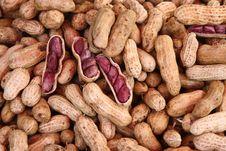 Free Peanuts Stock Image - 21084651
