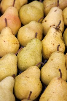 Free Pears Royalty Free Stock Images - 21089089