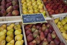 Free Selection Of Pears Royalty Free Stock Photos - 21089148