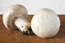 Free Champignon Mushroom Royalty Free Stock Photo - 21089705