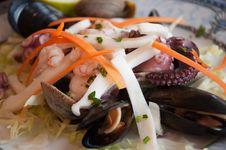 Tasty Seafood Salad