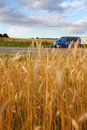 Free Landscape Of Ripe Wheat Field And Blue Van Stock Image - 21091311