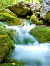 Free Natural Stream Flows Stock Photography - 21097882
