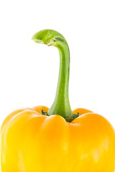 Free Yellow Peppers On A White Stock Photography - 21090112