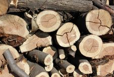 Free Pile Of Wood Royalty Free Stock Images - 21091689