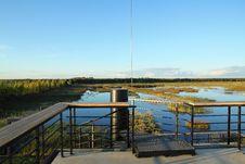 Free Overgrown Lake Stock Images - 21092184