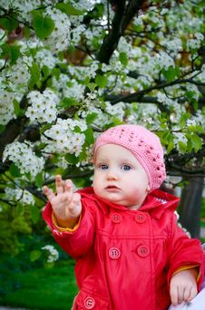 Free A Baby Girl In The Garden Stock Photography - 21092332