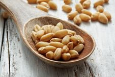 Free Sweet Dry Wheat Stock Photography - 21093022