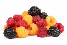 Free Berries Ripe Blackberry Black, Raspberries Stock Photo - 21094630