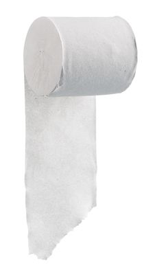Free Toilet Paper Royalty Free Stock Photography - 21095447