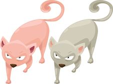 Free Cat Vector Royalty Free Stock Photography - 21096367