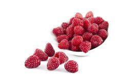 Free Raspberry Stock Photography - 21096612