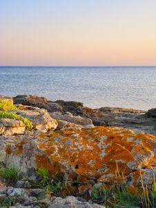 Free Stones Into The Sea Stock Photos - 21097913