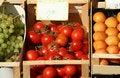 Free Tomatoes Royalty Free Stock Photos - 2117208