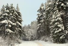 Free Winter Road Stock Image - 2113021