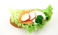 Free Sandwich Royalty Free Stock Photography - 2115257