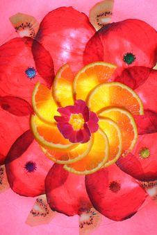 Free Beetroot-Orange Upright Stock Photography - 2117952