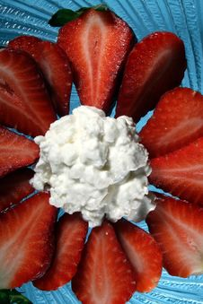 Strawberries An Cottage Cheese Royalty Free Stock Photo