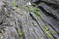 Free Glacial Grooves Royalty Free Stock Photo - 21103085