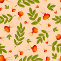 Free Rose Hip Seamless Beige Pattern. Stock Photos - 21104333