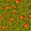 Free Rose Hip Seamless Green Pattern. Royalty Free Stock Images - 21104359