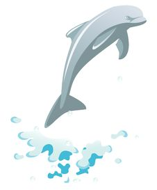 Free Dolphin Royalty Free Stock Photo - 21100415
