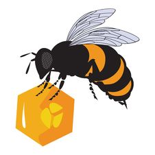 The Vector Bees And Honeycomb With Honey Royalty Free Stock Image