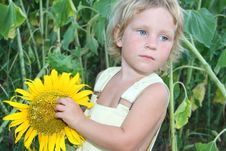 Free Toddler Girl With Sunflower Outdoor Royalty Free Stock Image - 21101146